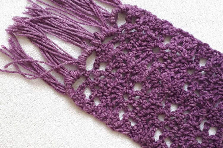 Sweet Berry Crochet Scarf